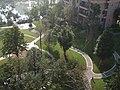 都市森林的花坛 - panoramio.jpg