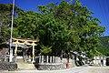須賀神社(須崎市).jpg