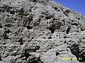 麻池古城墙遗址 - panoramio.jpg