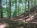 02 Schlossbühl (Yach).JPG