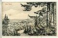 05831-Bad Elster-1905-Blick auf Bad Elster mit Auerhahn-Brück & Sohn Kunstverlag.jpg