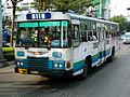 111 Hino-ak176.jpg