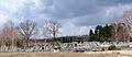 131413 Cemetery in Jeruzal (powiat miński) - 02.jpg