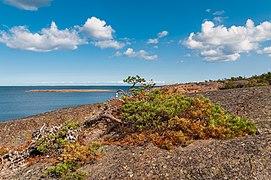 18-09-01-Schären westlich von Långbådan RRK7782.jpg