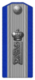 1914 Podhorunzhyi (OR8) of Russian Orenburg 1st Cossack regiment p06.png
