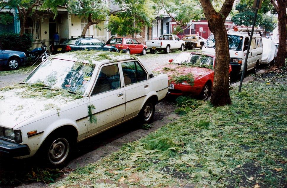 1999 Sydney hailstorm cardamage
