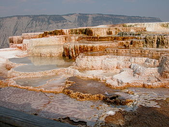 English: Main terrace of Mammoth Hot Springs i...