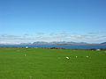 2008-05-25 14 46 55 Iceland-Þingvellir.jpg