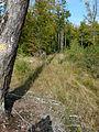 200910071242MEZ Limeswanderweg Kastell Hainhaus - Wp 10-13 01 dunkel.jpg