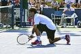 2013 US Open (Tennis) - Fabio Fognini (9667976708).jpg