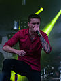 2014-06-05 Vainsteam Heaven Shall Burn 18.jpg