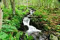 2014-08-28 16-59-46 cascade.jpg