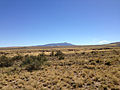 2014-09-25 12 15 40 View of Jarbidge Peak from Diamond A Road (Elko County Route 751) about 10.5 miles east of Gold Creek Road (Elko County Route 749) and Rowland Road (Elko County Route 750) in Elko County, Nevada.jpg