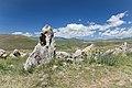 2014 Prowincja Sjunik, Zorac Karer, Prehistoryczny kompleks megalityczny (058).jpg