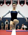 2015 District Championships West Geauga 02.jpg