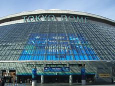 2015 WBSC Premier12 at Tokyo Dome 2.JPG