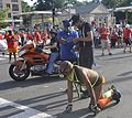 2016 Capital Pride (Washington, D.C.) - 18.jpg