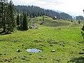 2017-07-22 (30) Way from Lechnergraben to Dürrenstein (Ybbstaler Alpen).jpg
