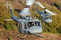 23d Flying Training Squadron UH-1.jpg