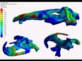 File:3D-Bite-Modeling-and-Feeding-Mechanics-of-the-Largest-Living-Amphibian-the-Chinese-Giant-Salamander-pone.0121885.s006.ogv