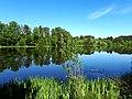 494. Токсово. Озеро Вероярви.jpg