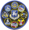 50th Operations Group Gaggle Patch.png