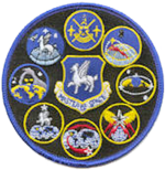 50th Operations Group Gaggle Patch