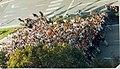 574 Maratoia - Marathón 2000.jpg