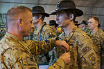 82nd Combat Aviation Brigade pilots earn Air medals DVIDS569877.jpg