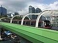 A516(001) South Island Line 23-05-2017.jpg