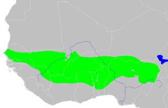 Sudan (region) - West Sudanian Savanna (green) in West Africa