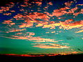 A Color of the Sky (1877436346).jpg