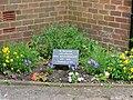 A Memorial Garden - geograph.org.uk - 447939.jpg