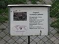 A Silesian Zoological Garden jac 18.JPG