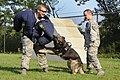 A day in the life, Scott AFB 130819-F-HA566-403.jpg