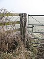 A frosted gate - geograph.org.uk - 639769.jpg