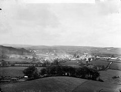 A view of Tregaron from Castle Hill NLW3361909.jpg