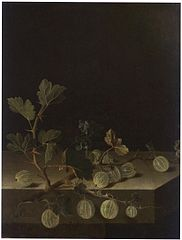 Still life with a spray of gooseberries