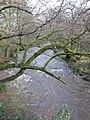 Afon Alwen - geograph.org.uk - 1118561.jpg