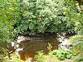 Afon Efyrnwy - River Vyrnwy - geograph.org.uk - 1405550.jpg