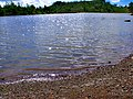 Agua tranquila - panoramio.jpg