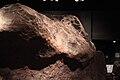 Ahnighito AMNH.jpg
