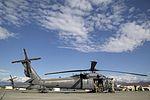 Alaska Air National Guard conducts flight operations 150723-F-YH552-003.jpg