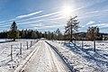 Albeck Seebachern Fahrweg zum Weissen Kreuz 22112017 2115.jpg