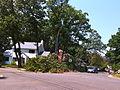 Alexandria Storm, August 2010 (4872255299).jpg