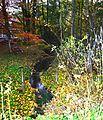 Alme, die Alme in der Nähe der Quelle 3.JPG