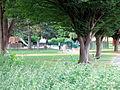 Am Mierscher Park-002.jpg