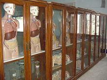 Ghulam Muhammad Mahar Medical College - Wikipedia