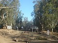 Ancient Slipway on the Murray at Echuca - panoramio.jpg