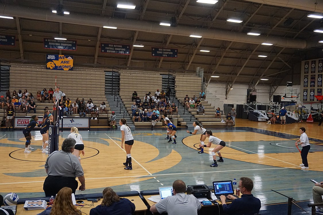 Angelo State vs. Texas A&M–Commerce volleyball 2017 09.jpg